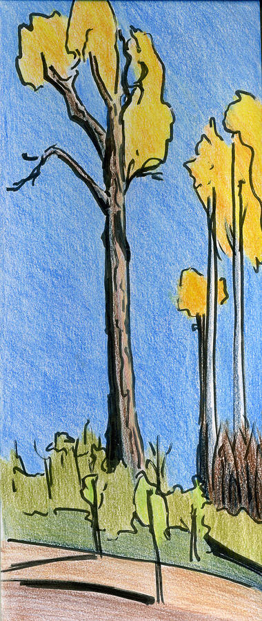 Trees Drawing - Crisp October by Lelia Sorokina