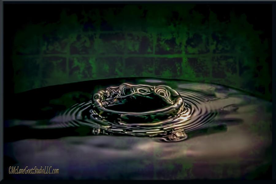 Water Photograph - Croc Splash by LeeAnn McLaneGoetz McLaneGoetzStudioLLCcom