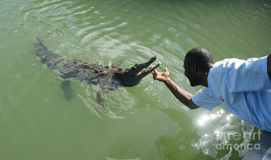 Crocodile Dundee Photograph - Crocodile Dundee Jamaica by Olaf Christian