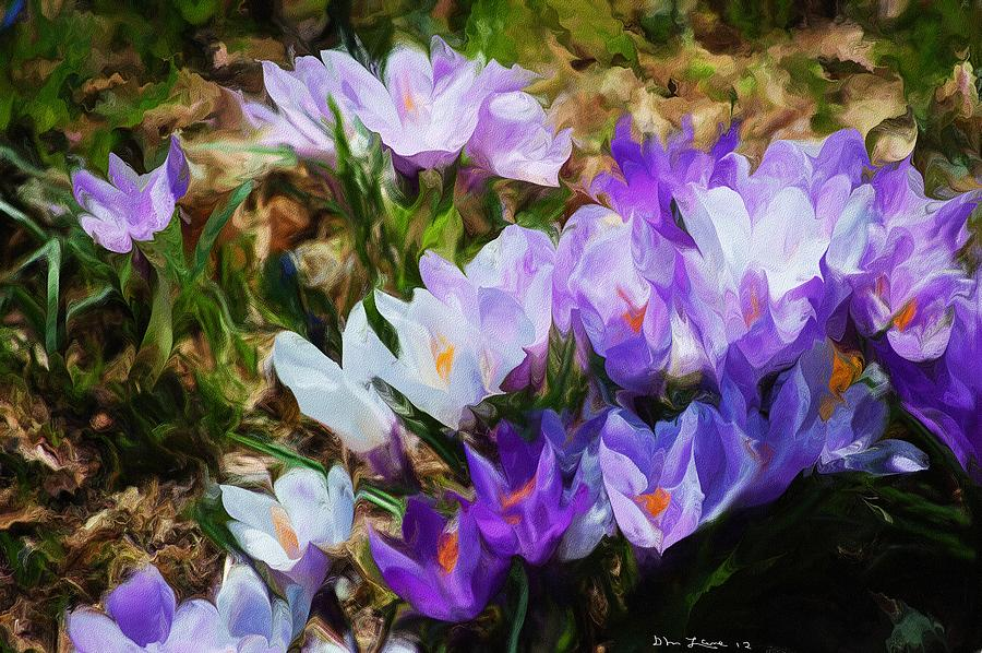 Floral Digital Art - Crocus Fantasy by David Lane