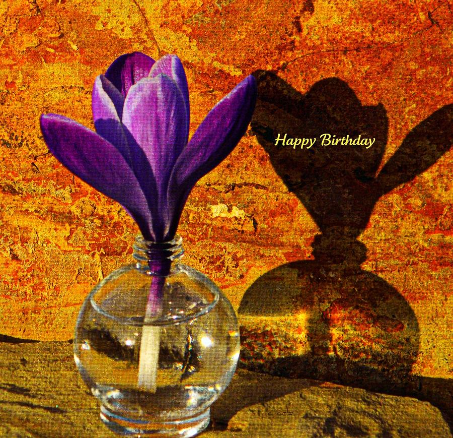 Crocus Floral Birthday Card Photograph By Chris Berry