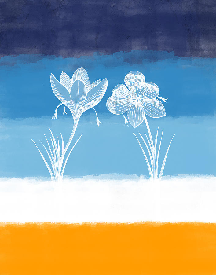 Crocus Digital Art - Crocus Flower by Aged Pixel