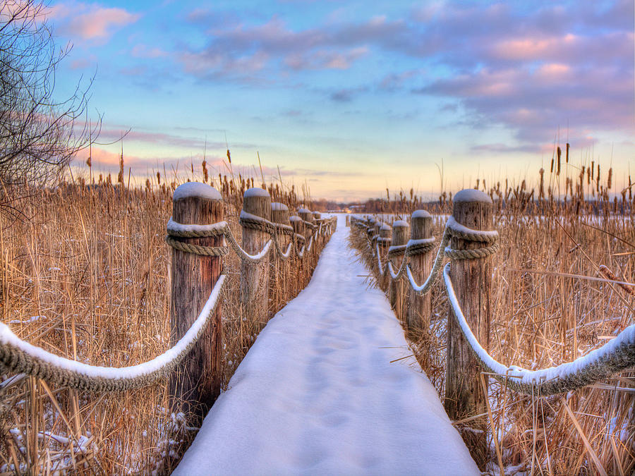 Path Photograph - Crooked Lake Boardwalk by Jenny Ellen Photography