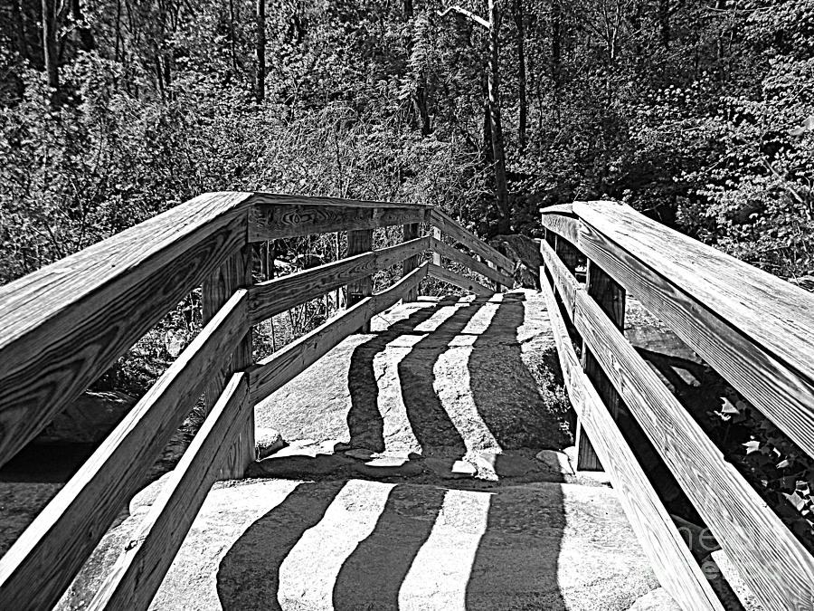 Black And White Photograph - Crooked Shadows by Lorraine Heath