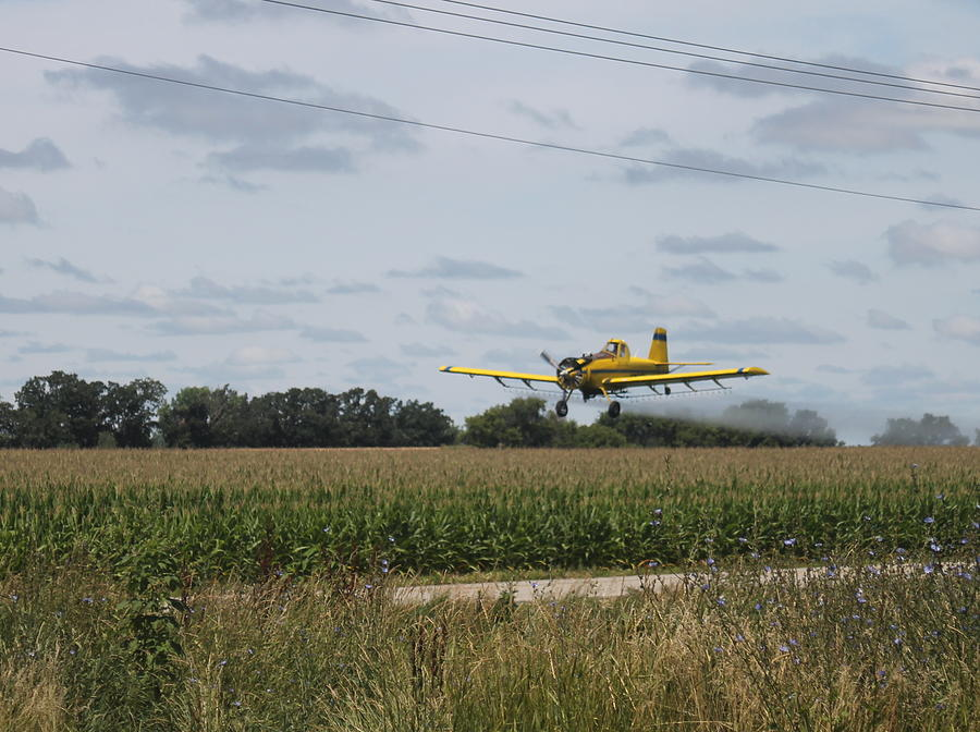 Crop Dusting 2 Photograph by Victoria Sheldon