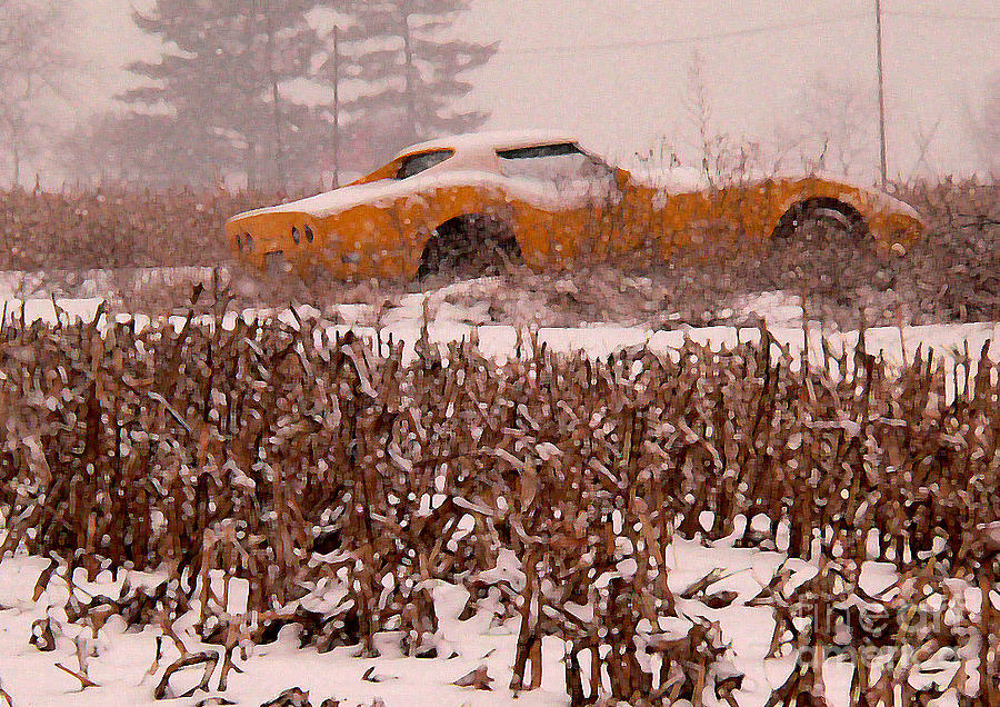 Corvette Photograph - Crop Rotation--vets This Year by David Bearden