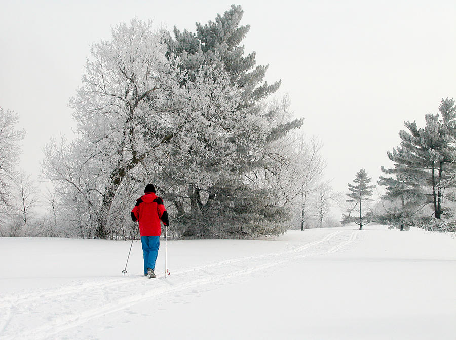 Ottawa Photograph - Cross Country Skiing by Rob Huntley