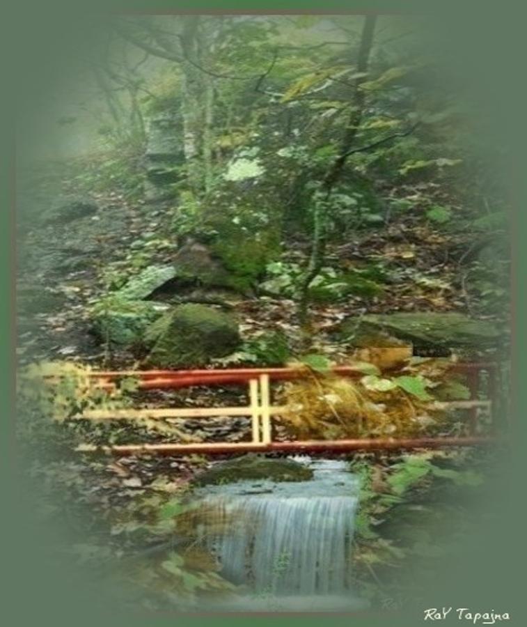 Wooden Mixed Media - A Bridge To Cross by Ray Tapajna