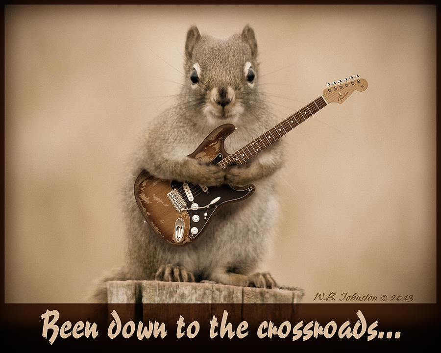 Squirrel Photograph - Crossroads by WB Johnston