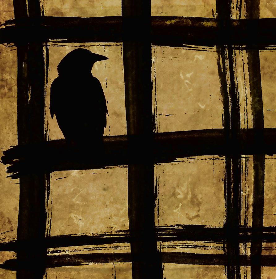 Crow Photograph - Crow and Golden Light Number 1 by Carol Leigh