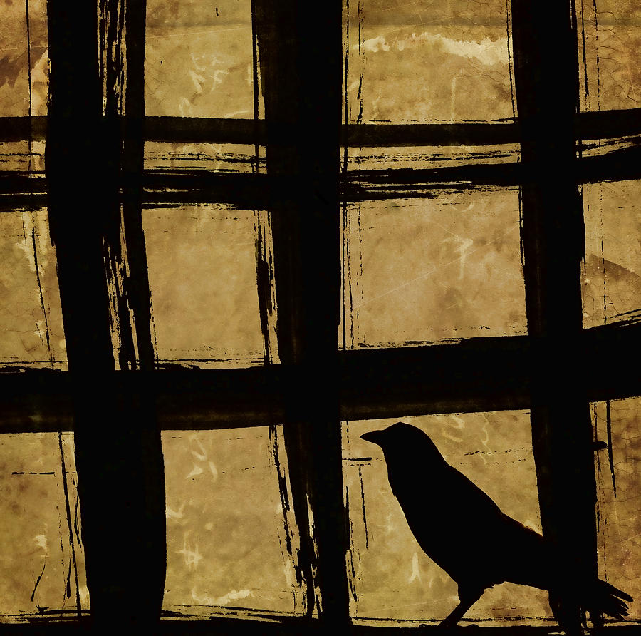 Crow Photograph - Crow And Golden Light Number 2 by Carol Leigh