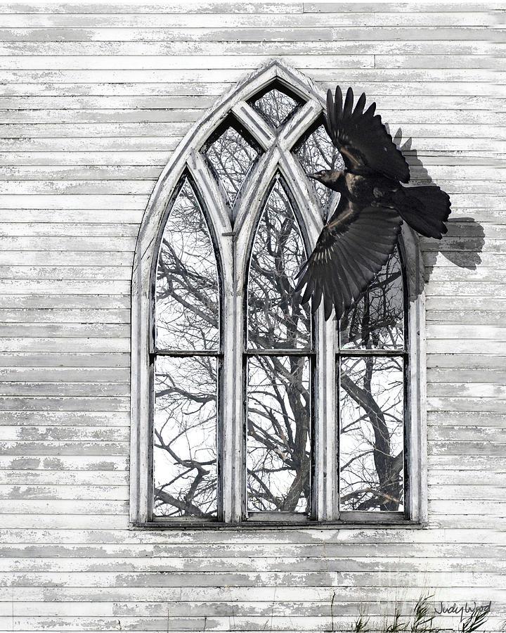 Crow Digital Art - Crow Church by Judy Wood