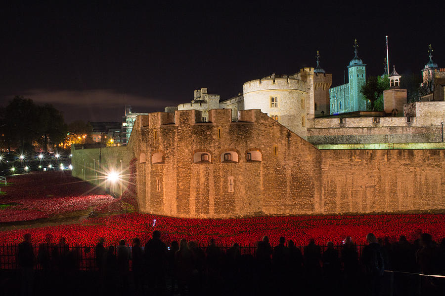 Tower Of London Photograph - Crowded Poppies by Andrew Lalchan