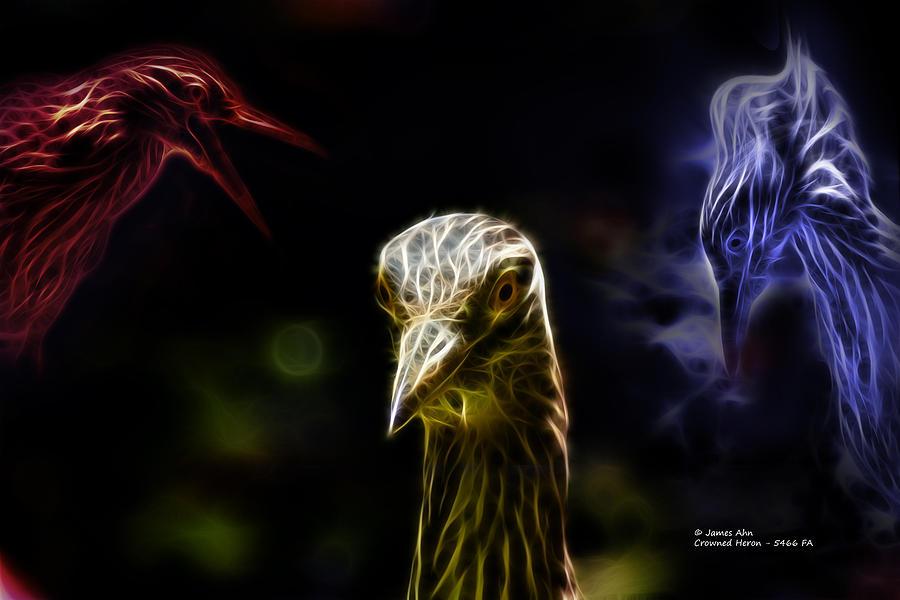 Digital Art Digital Art - Crowned Heron - 5466 Fa by James Ahn