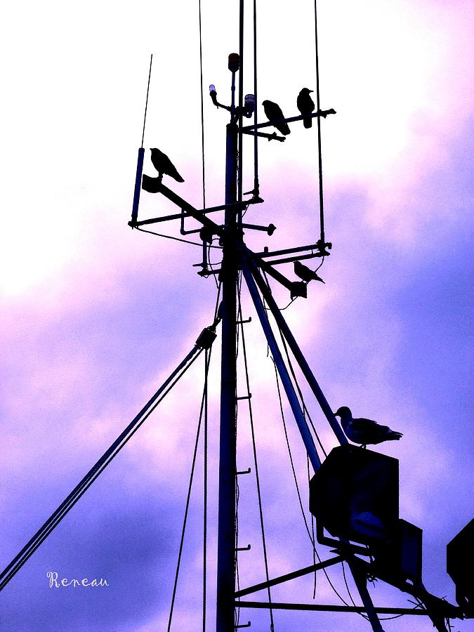 Ships Photograph - Crows Nest Literally by Sadie Reneau