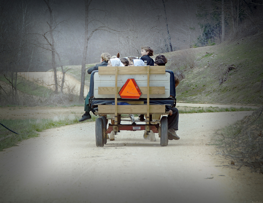 The Amish Photograph - Cruising by Steven Michael