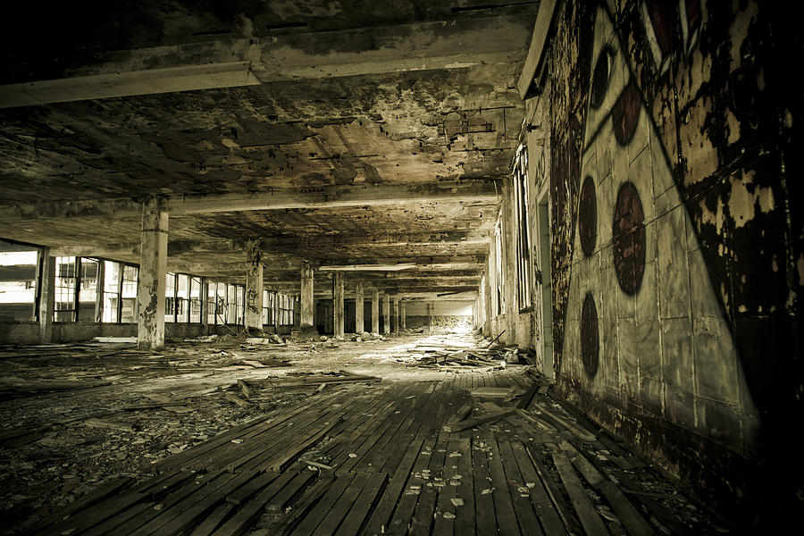 Packard Automotive Plant Photograph - Crumbling History by Priya Ghose