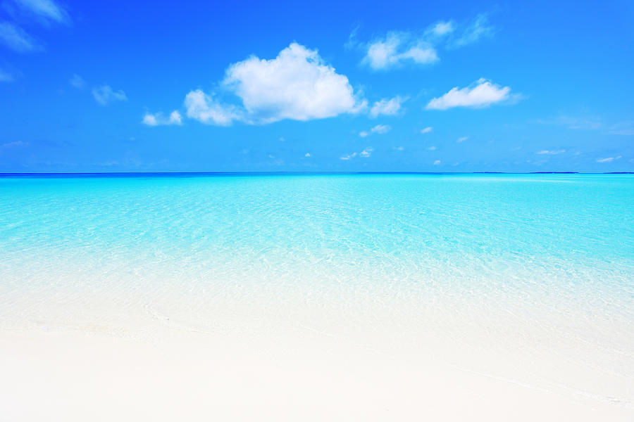 Crystal Transparent Sea And Blue Sky Photograph by Skynesher