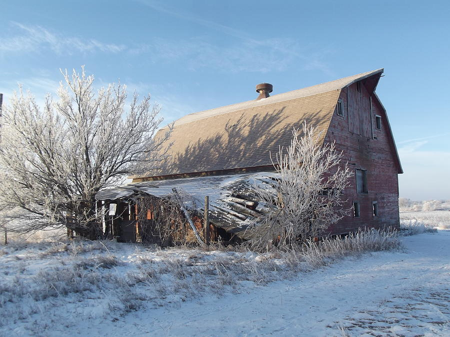 Frost Photograph - Crystaline Barn by Bonfire Photography