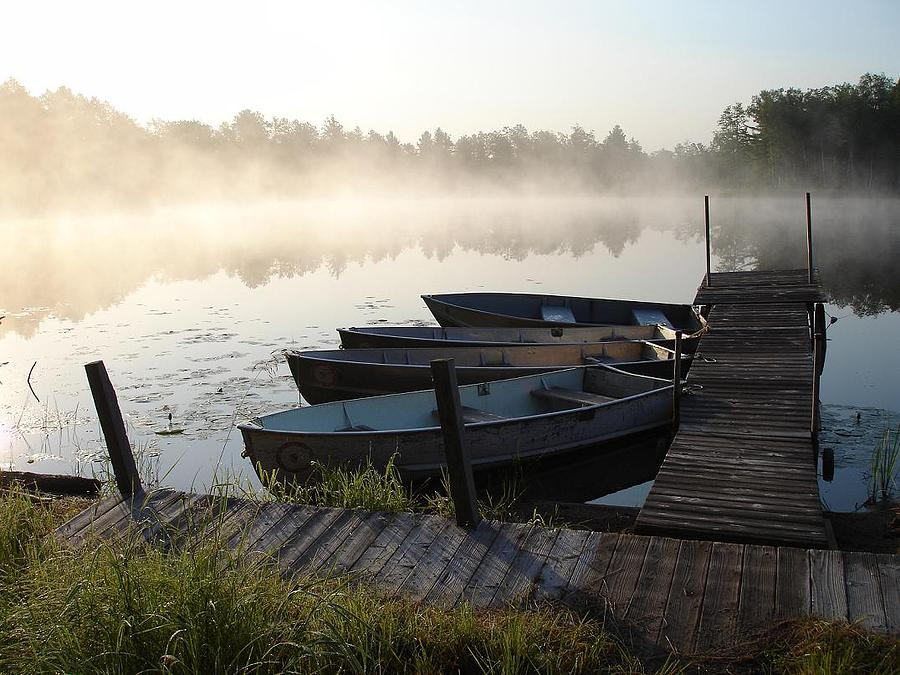 Rowboats Photograph - Cub World Marina by Aiden Bishop