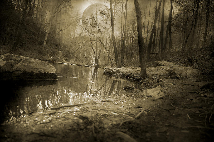 Full Photograph - Culmination by Betsy Knapp