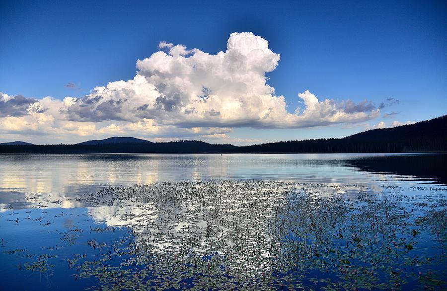 Water Photograph - Cumulonimbus Over Water Lilies by Rich Rauenzahn