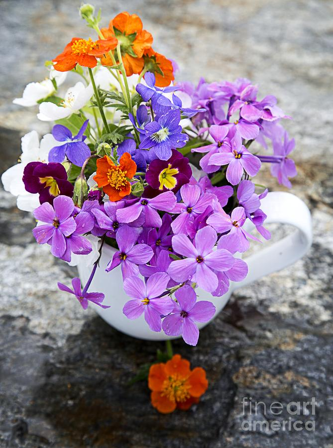 Colorful Photograph - Cup Full Of Wildflowers by Edward Fielding