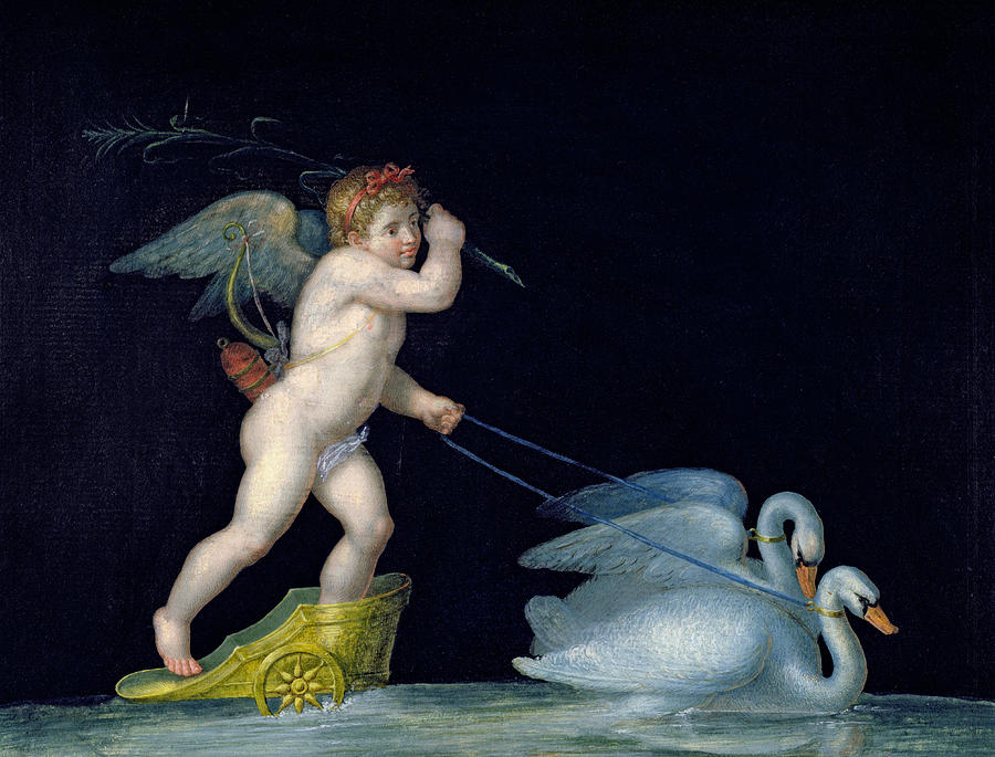 Eros Painting - Cupid Being Led By A Pair Of Swans by Michelangelo Maestri