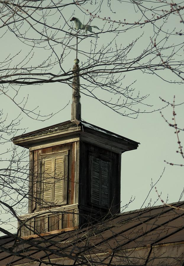 Faded Weathervane Photograph - Cupola Through The Trees by Debbie Finley