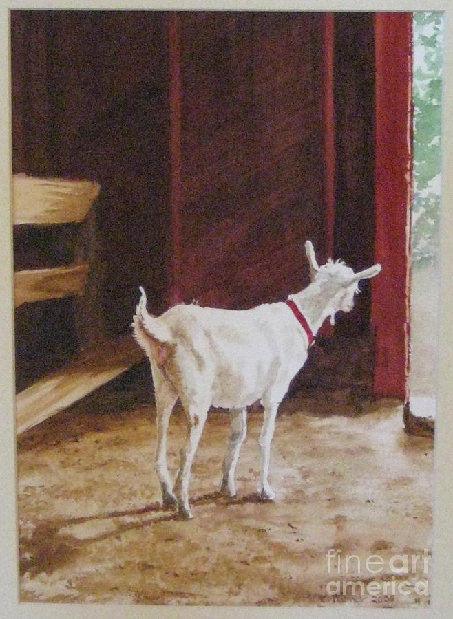 Goat Painting - Curious Kid by Carla Dabney