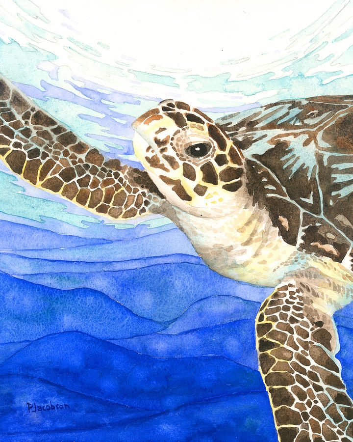Turtle Painting - Curious Sea Turtle by Pauline Walsh Jacobson