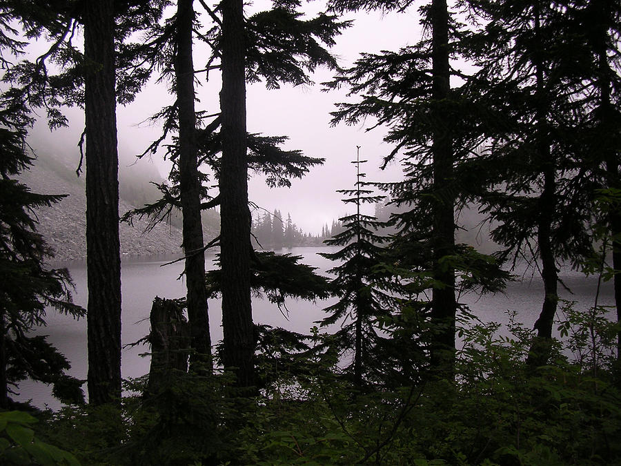 Lake Valhalla Photograph - Curtained Beyond by Tom Trimbath