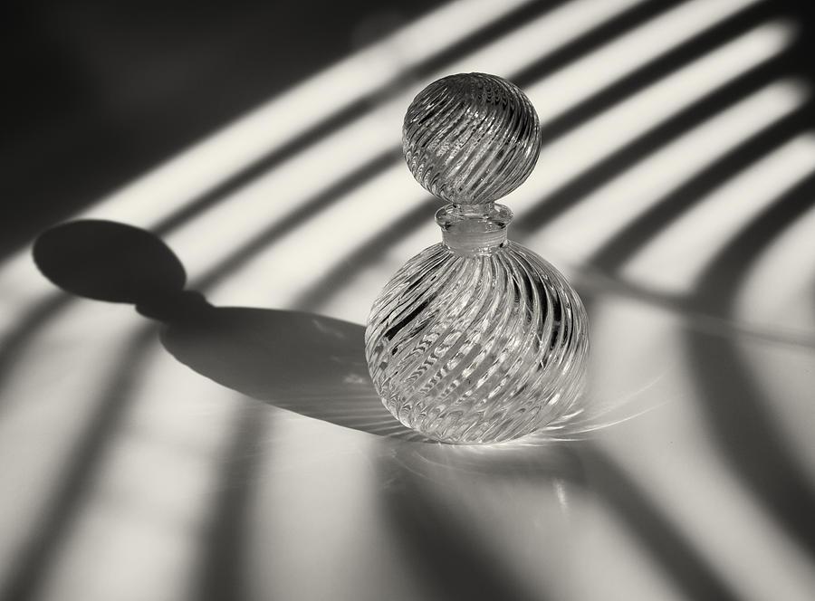 Curvature Photograph - Curvatures 3...shadows by Tom Druin