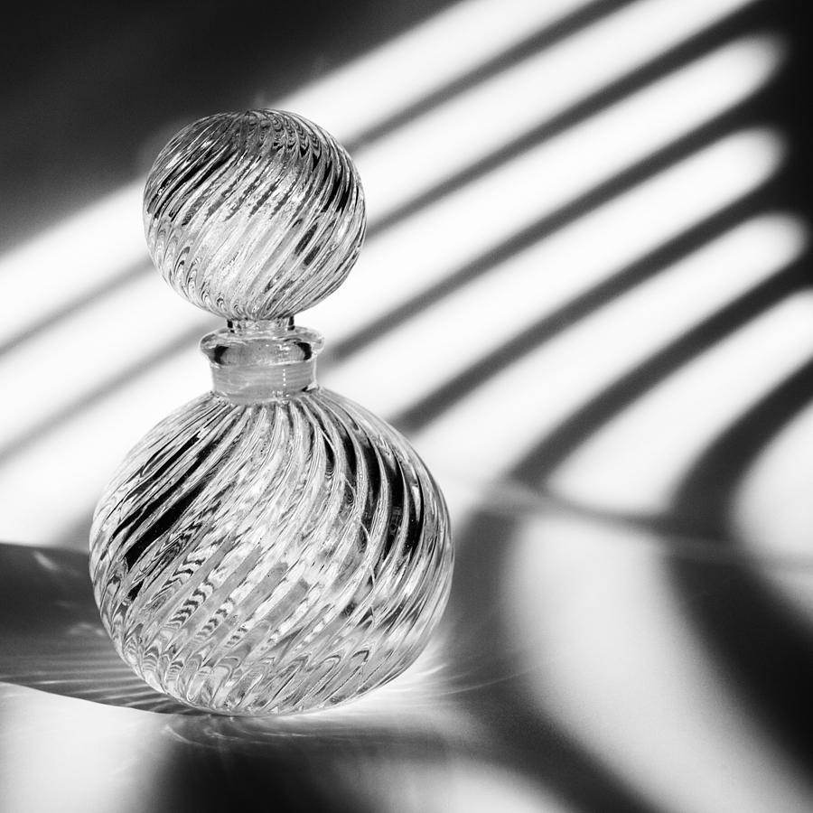 Curvatures Photograph - Curvatures by Tom Druin