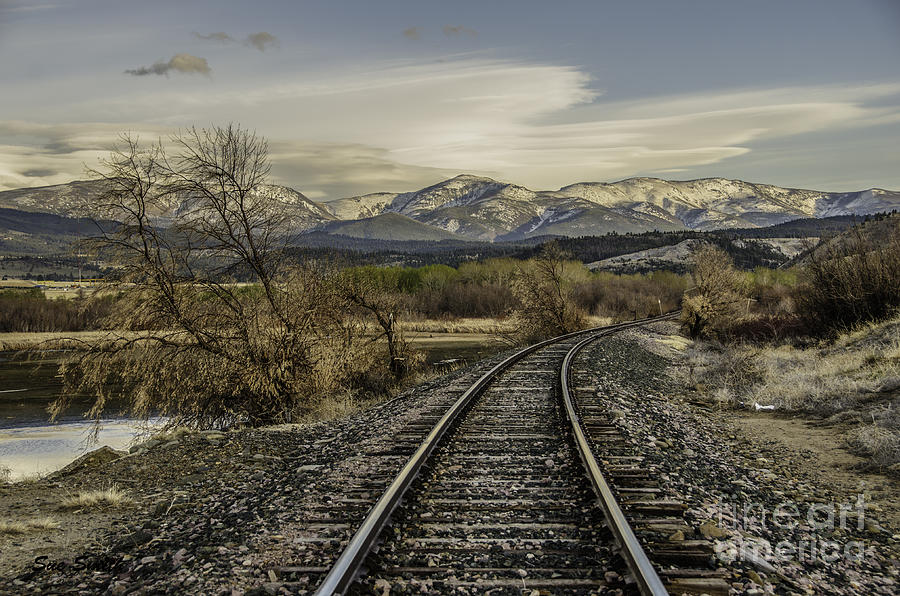Beauty In Nature Photograph - Curve In The Tracks by Sue Smith