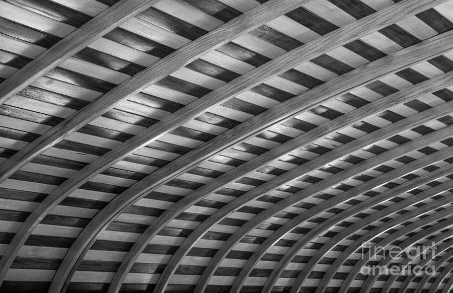 Ribs Photograph - Curves by David Rucker
