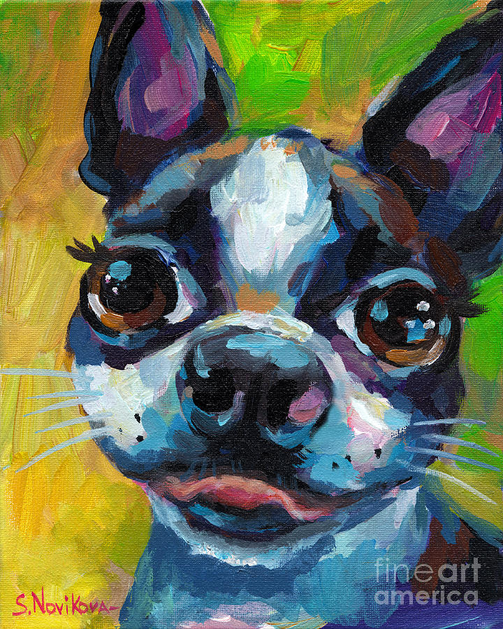 Cute Boston Terrier Puppy by Svetlana Novikova