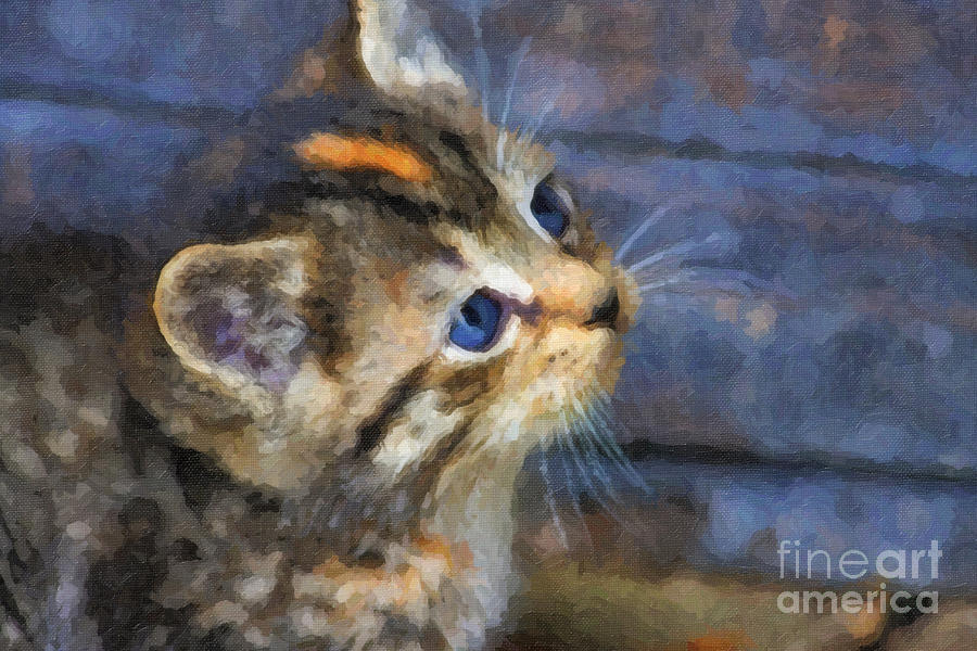 Cat Oil Paintings For Sale