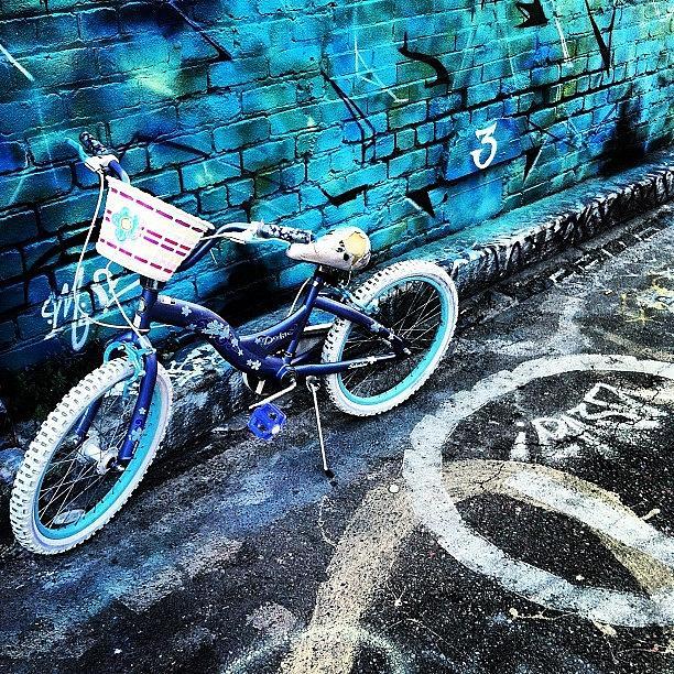 Urban Photograph - Cuteness by Courtney Haile