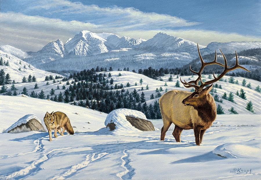 Wildlife Painting - Cutoff Mountain -  Elk And Coyote   by Paul Krapf