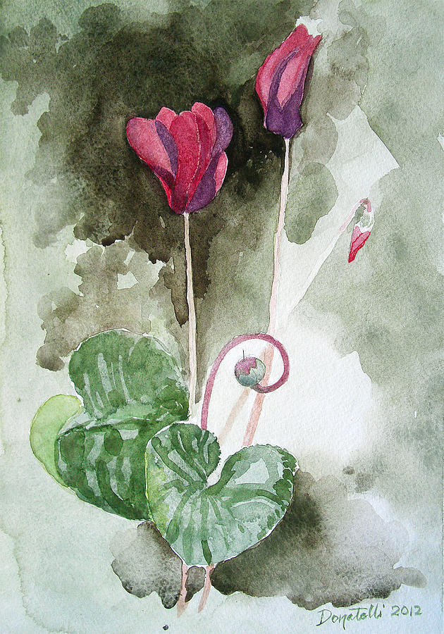 Cyclamen 1 study by Kathryn Donatelli