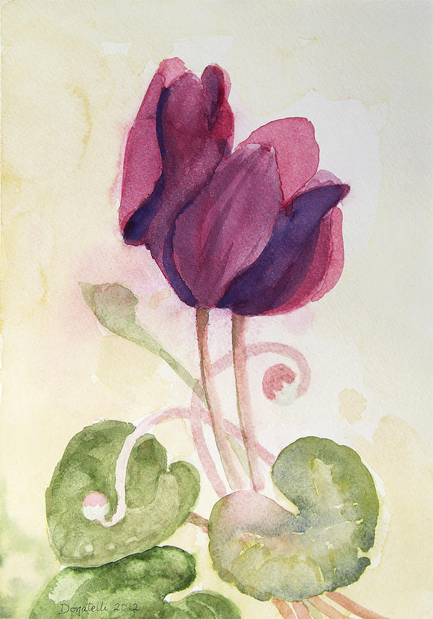 cyclamen 2 study by Kathryn Donatelli