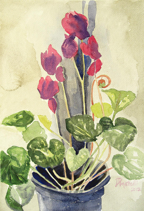Cyclamen 3 study by Kathryn Donatelli