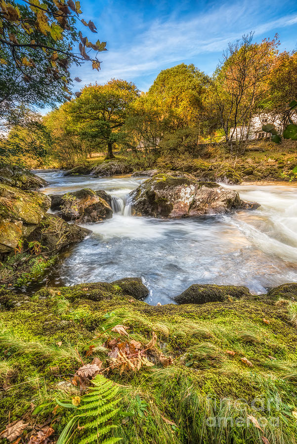 Autumn Photograph - Cyfyng Falls by Adrian Evans