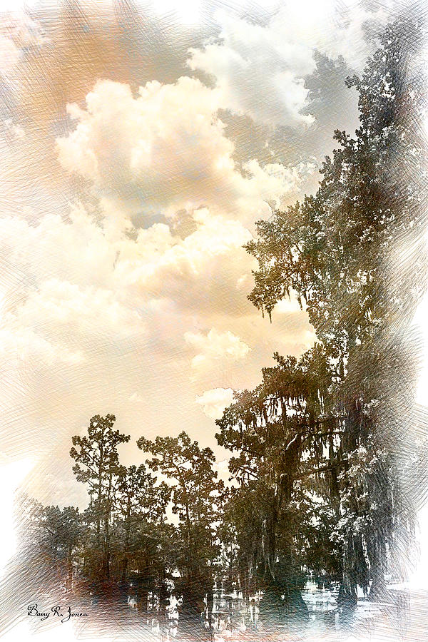 Cypress Trees Photograph - Swamp - Louisiana - Cypress Heaven by Barry Jones