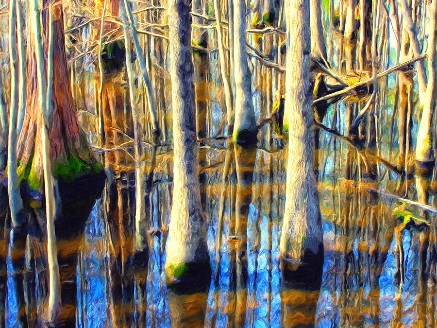 Art Of Paintings Of Cypress In Swamps
