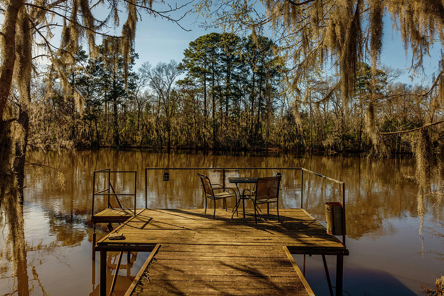 Horizontal Photograph - Cypress Trees At Caddo Lake State Park by Panoramic Images