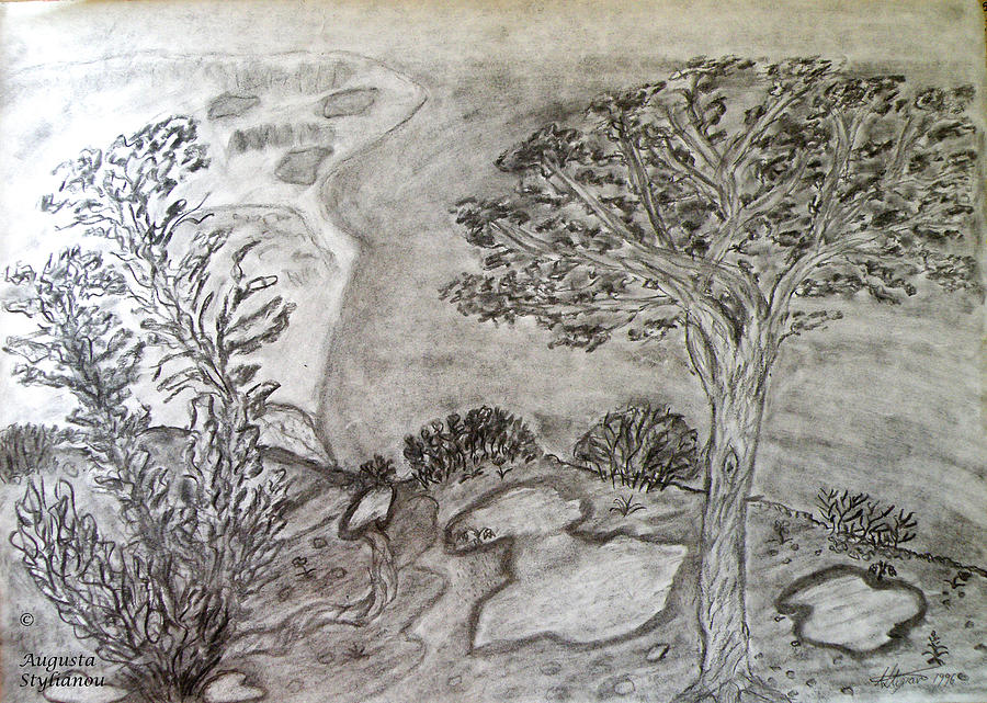 Beautiful Landscape Drawing - Cypresses In Cyprus by Augusta Stylianou