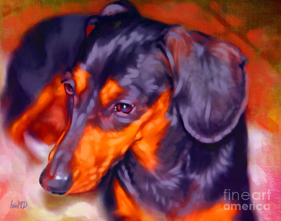 Dog Painting - Dachshund Portrait by Iain McDonald