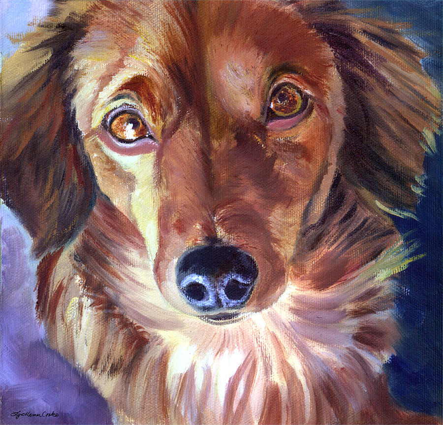 Dachshund Dog Painting - Dachshund Sparkle Eyes by Lyn Cook